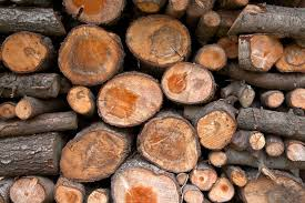 'Wood, Bamboo, Coal, Lignin and Its Derivatives
